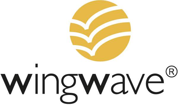 wingwave coaching berlin pruefungsangst emotionscoaching